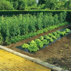 Film de paillage toutes cultures - TERRAFILM - 10 x 140 M - NORTENE - Protection des plantes - DE-525147
