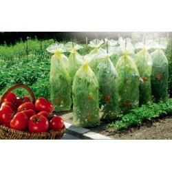 Housses de croissance pour tomates - TOMATOTUBE - 0.6 x 10 M - NORTENE - Protection des plantes - DE-349977