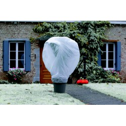 Voile d'hivernage Wintertex - 10 m - Lot de 2 - NORTENE - Protection des plantes - DE-223123