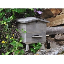 Mini ruche - Bois - Style rustique - JEAN LOUIS LEVIGNE - Apiculture - BR-406108