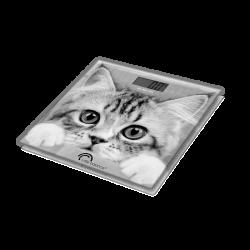 Pèse personne - The Cat - LITTLE BALANCE - Pèse-personne - DE-531203