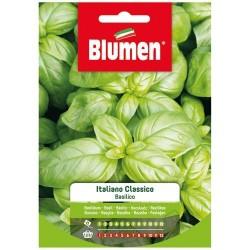 Graines de Basilic - Italien Classique - BLUMEN - Semences - DE-516709