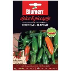 Graines de Piment - Jalapeno - BLUMEN - Semences - DE-516717
