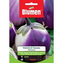 Graines d'Aubergine violette - Toscane - BLUMEN - Semences - DE-516691