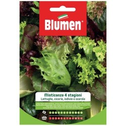 Graines de Salade - Assortiment - BLUMEN - Semences - DE-516873