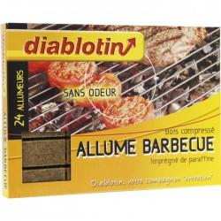 Cubes allume barbecue - x 24 - DIABLOTIN - Allume-feux - BR-635251