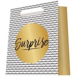 Pochette cadeau - Surprise - 18 X 23 cm - PAPETERIES DU POITOU - Bazar - DE-581711
