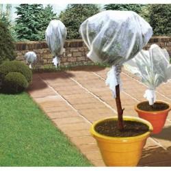 Voile d'hivernage - 5 x 2 m - CAP VERT - Protection des plantes - BR-016080