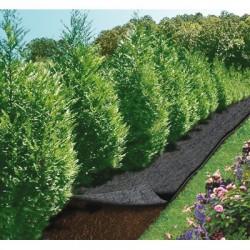 Feutre de jardin - 5 x 0.9 m - CAP VERT - Protection des plantes - BR-016111