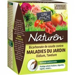 Bicarbonate de soude contres les maladies dujardin - 350 Grs - NATUREN - Traitements Insectes / maladies - BR-940155