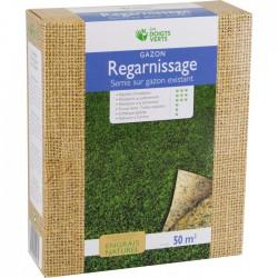 Gazon regarnissage - 50 m² - 0.5 Kg - LES DOIGTS VERTS - Gazon et pelouse - BR-817434