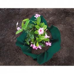 Feutre de plantation - Polypropylène - 6 m - CATRAL - Protection des plantes - BR-143450