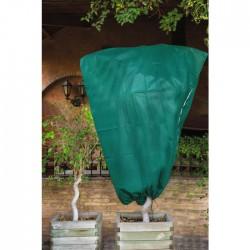 Housse d'hivernage en polypropylène - Non tissé - 2 m - Lot de 2 - CATRAL - Protection des plantes - BR-143427