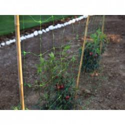 Filet à ramer - Polyéthylène - Extrudé Tutornet - 5 M - CATRAL - Protection des plantes - BR-143440
