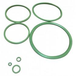 Joints Viton pour pulvérisateur C12 de Pulsen - CAP VERT - Pulvérisateurs - BR-566493